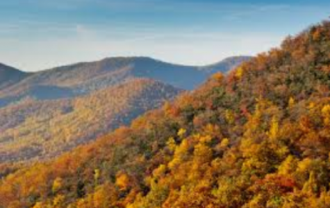 Enjoying VA in the fall: the ultimate guide