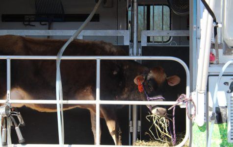Mobile Dairy Classroom (moo)ving to different schools