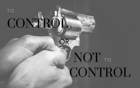To control or not to control: the debate on firearm usage