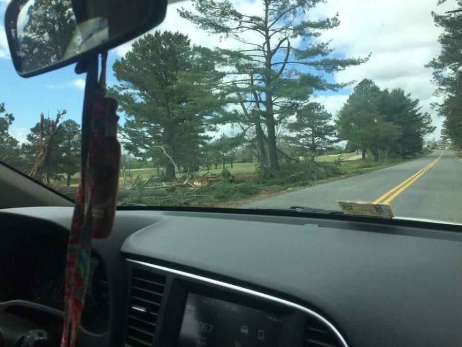 Fallen trees at Tuscarora County Club on Golf Club Road.