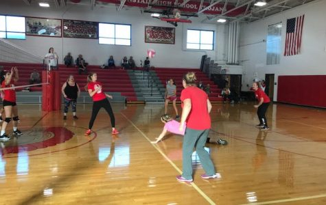 Dig Pink game held to raise money for cancer research